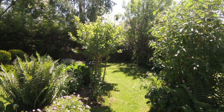 28 broadgates garden3