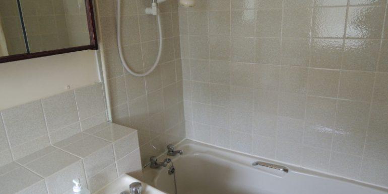 86 Boleyn Way bathroom